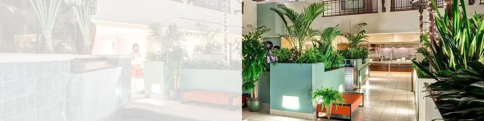 hotel-slide-image2